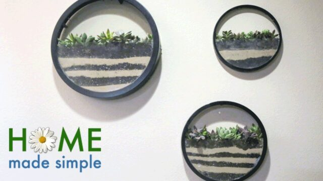 How to Make Living Wall Art | Home Made Simple | Oprah Winfrey Network
