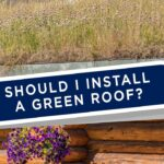 Green Roofs: Are They Right for Your Home?