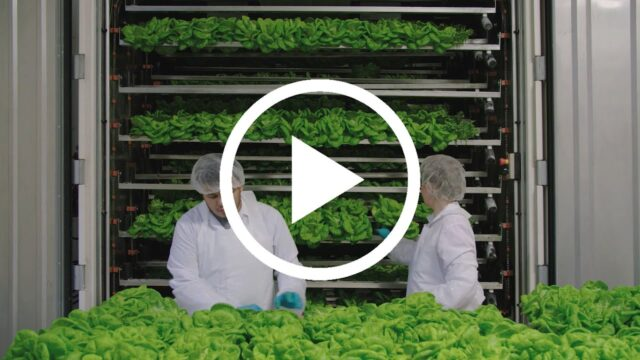 Feeding a Changing World with CubicFarms' Automated Vertical-Farming Technology