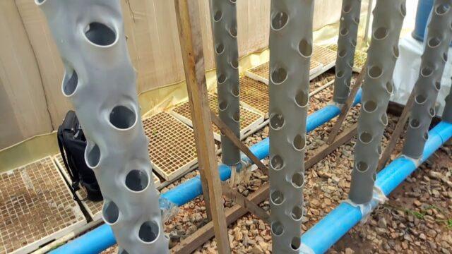 DIY PVC hydroponic tower system