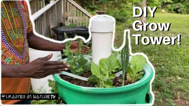 DIY Grow towers | Growing Your Food!