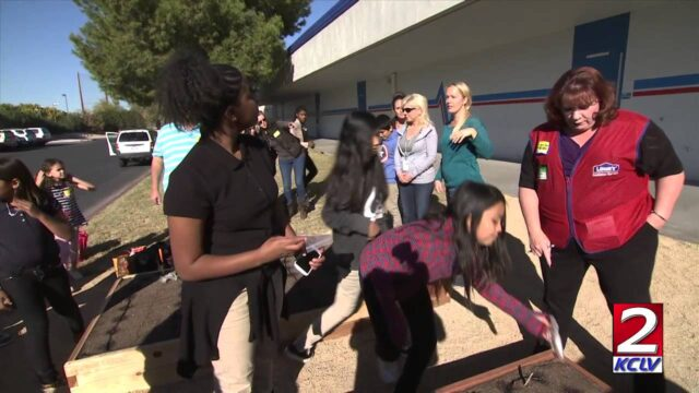 City Beat – SCHOOL GARDENS