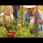 8 Amazing Health Benefits of Gardening   Gardening and Heallth