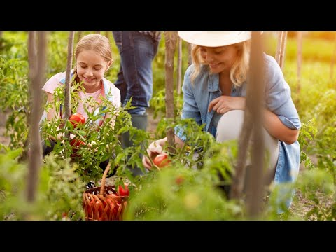 8 Amazing Health Benefits of Gardening | Gardening and Heallth