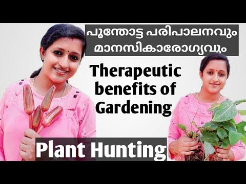 Therapeutic benefits of Gardening / പൂന്തോട്ട പരിപാലനവും മാനസികാരോഗ്യവും