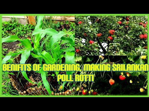 benefits of gardening