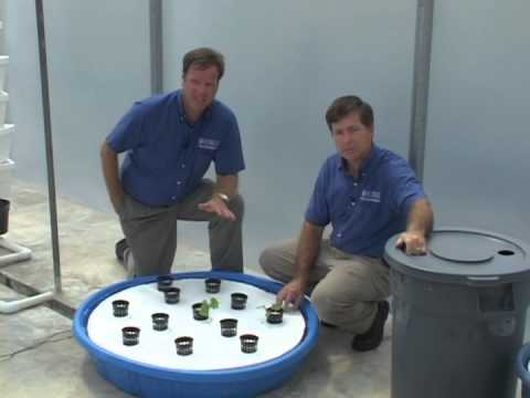 Hydroponics – Floating Systems