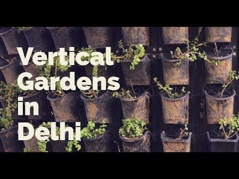 Vertical Gardens in Delhi