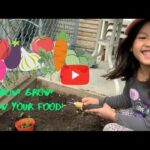 Growing vegetable garden! Beginner gardening for kids.