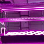 New Home Scale Indoor Vertical Hydroponics Farm – Part Three