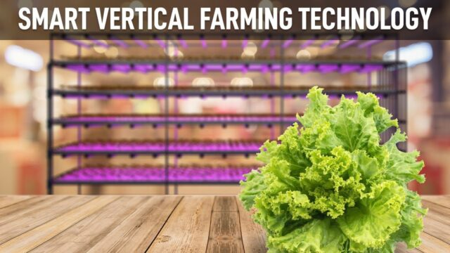 Smart Hydroponic Vertical Farming Systems by Plantekno® LED Grow Light Technology