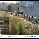 Green and Healthy Cities: Environmental Exposures and Urban Design for Healthy Longevity
