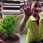 How to Teach Basics of Gardening To Kids | Plantation At Home – Sunday Activity | Plantation By Kids