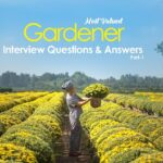 Gardener Interview Questions and Answers 2019 Part-1   Gardener Interview Questions   WisdomJobs