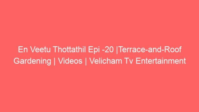 En Veetu Thottathil Epi -20 |Terrace-and-Roof Gardening | Videos | Velicham Tv Entertainment