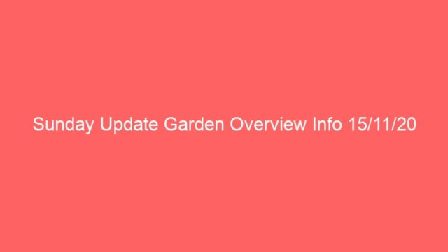Sunday Update Garden Overview Info 15/11/20