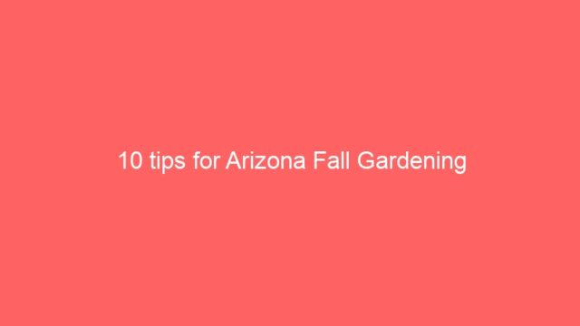 10 tips for Arizona Fall Gardening