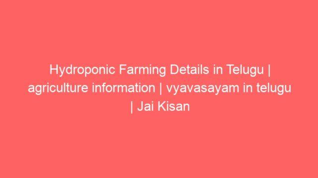 Hydroponic Farming Details in Telugu | agriculture information | vyavasayam in telugu | Jai Kisan