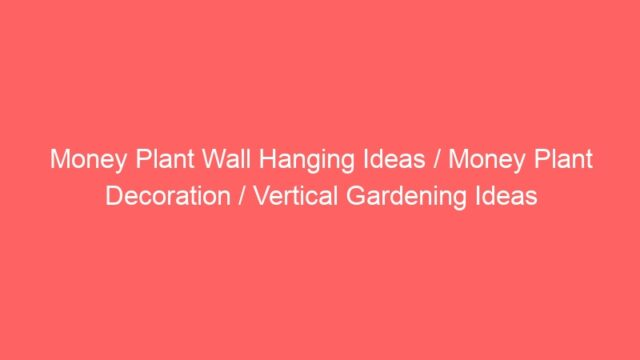 Money Plant Wall Hanging Ideas / Money Plant Decoration / Vertical Gardening Ideas