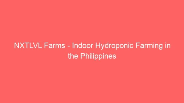 NXTLVL Farms – Indoor Hydroponic Farming in the Philippines