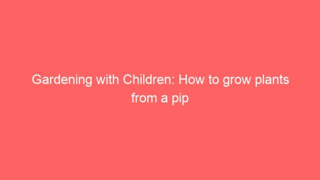 Gardening with Children: How to grow plants from a pip