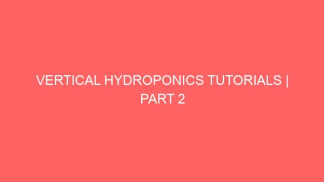 VERTICAL HYDROPONICS TUTORIALS | PART 2