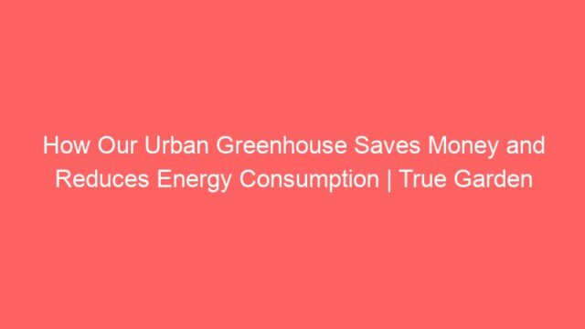How Our Urban Greenhouse Saves Money and Reduces Energy Consumption | True Garden
