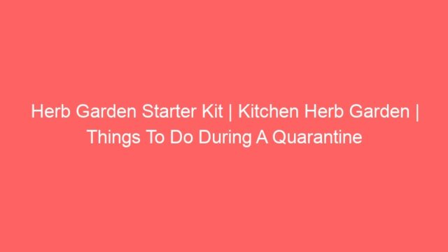 Herb Garden Starter Kit | Kitchen Herb Garden | Things To Do During A Quarantine