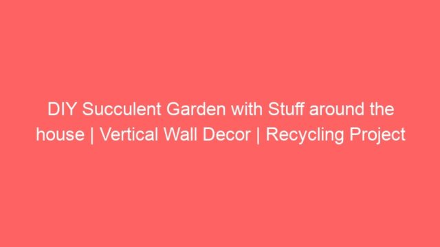 DIY Succulent Garden with Stuff around the house | Vertical Wall Decor | Recycling Project