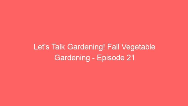 Let's Talk Gardening! Fall Vegetable Gardening – Episode 21