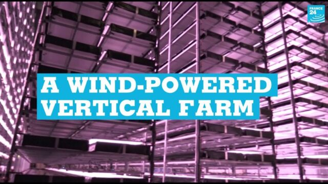A wind-powered vertical farm: Giant urban farm opens in Denmark