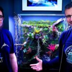 Planted Tank & Green Wall – NEW TREND? How to Build Your Own