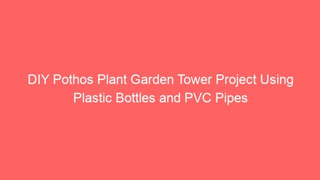 DIY Pothos Plant Garden Tower Project Using Plastic Bottles and PVC Pipes