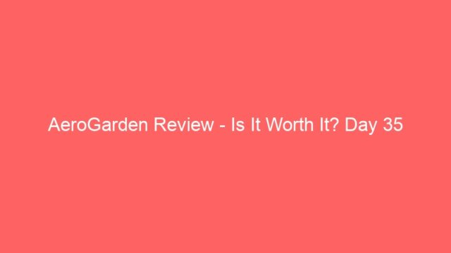 AeroGarden Review – Is It Worth It? Day 35