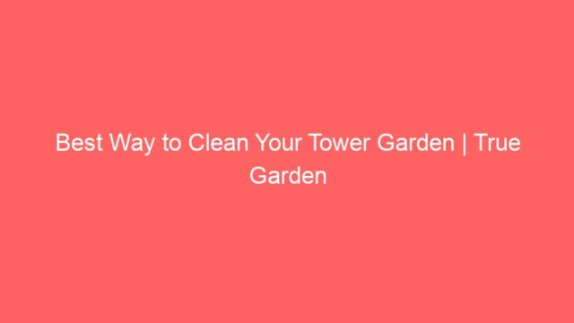 Best Way to Clean Your Tower Garden | True Garden