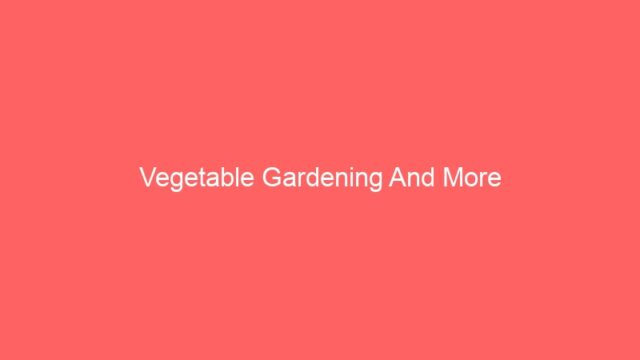 Vegetable Gardening And More