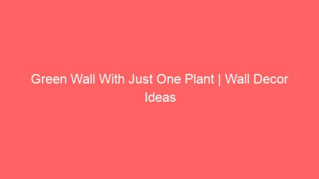 Green Wall With Just One Plant | Wall Decor Ideas