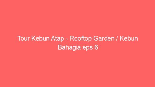 Tour Kebun Atap – Rooftop Garden / Kebun Bahagia eps 6