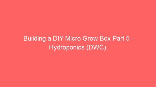 Building a DIY Micro Grow Box Part 5 – Hydroponics (DWC).