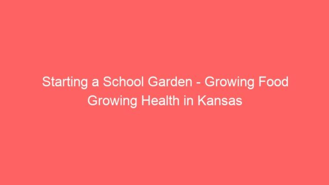 Starting a School Garden – Growing Food Growing Health in Kansas