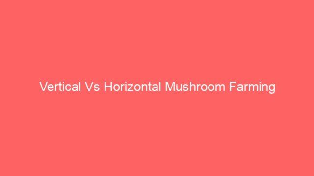 Vertical Vs Horizontal Mushroom Farming