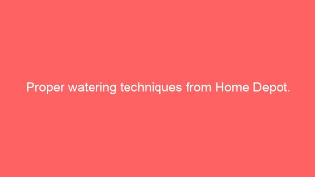 Proper watering techniques from Home Depot.