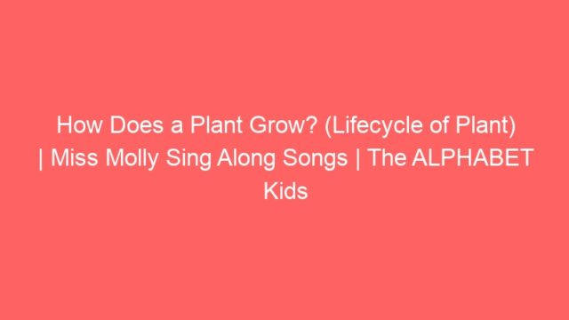 How Does a Plant Grow? (Lifecycle of Plant) | Miss Molly Sing Along Songs | The ALPHABET Kids