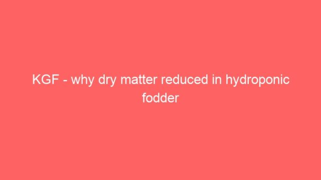 KGF – why dry matter reduced in hydroponic fodder