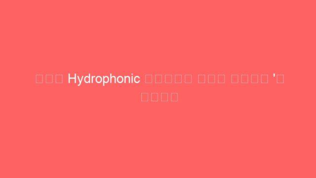 ਹੁਣ Hydrophonic ਤਕਨੀਕ ਨਾਲ ਪਾਣੀ 'ਚ ਉਗਾੳ ਸਬਜ਼ੀਆਂ