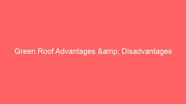 Green Roof Advantages & Disadvantages