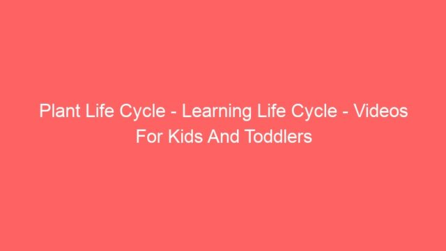 Plant Life Cycle – Learning Life Cycle – Videos For Kids And Toddlers