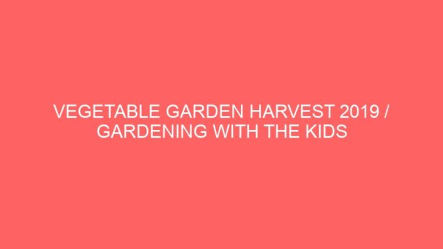 VEGETABLE GARDEN HARVEST 2019 / GARDENING WITH THE KIDS