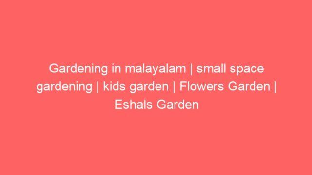 Gardening in malayalam | small space gardening | kids garden | Flowers Garden | Eshals Garden