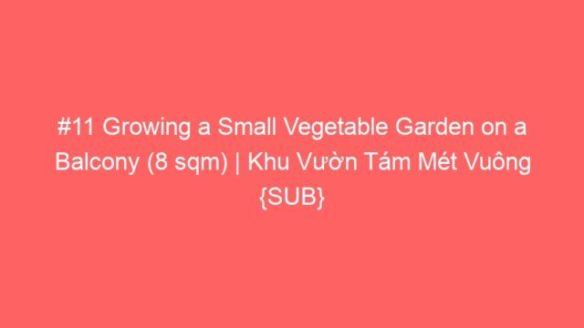 #11 Growing a Small Vegetable Garden on a Balcony (8 sqm) | Khu Vườn Tám Mét Vuông {SUB}